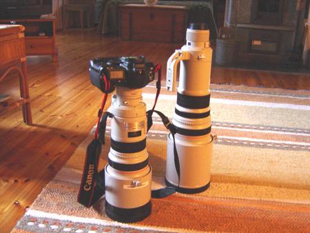 Hyvä kamera lintukuvaukseen